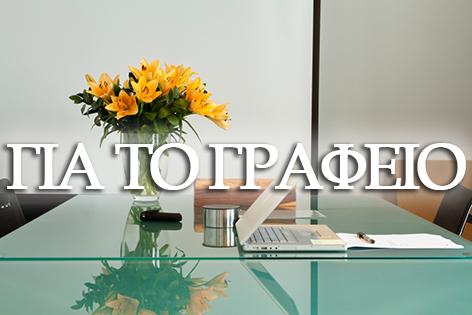 Ανακλύψτε στο FlowerDesign μοναδικές ιδέες για φυτά και ανθοσυνθέσεις που θα ανανεώσουν το χώρο του γραφείου σας