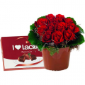 Flower Arrangements with red rose  ARR 12015