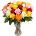 Τριαντάφυλλα Μιξ Χρώματα σε Βάζο - ΤΡΙ 072248