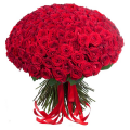 200 red big roses - ENG 13001