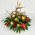Καλάθι με Παραδείσια Πουλιά, Ανθούρια - BASK 23014