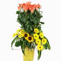 Τριαντάφυλλα, Ήλιους και Ζέρμπερες - GAM00123