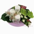 Άγριες Ορχιδέες, Ανθούρια, Τριαντάφυλλα & Τροπικά - XMAS 44007