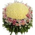 200 λευκά Τριαντάφυλλα και Ορχιδέες - ENG 13006