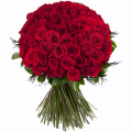 100 Τριαντάφυλλα ΠΡΟΣΦΟΡΑ