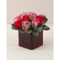 Mix Roses in Glass Flowerpot