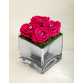 Roses in Glass holder