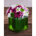 Mix Chrysanthemum in Glass