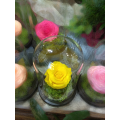 Forever Rose | Yellow Rose In A Jar That Lasts 4 Years Without Care
