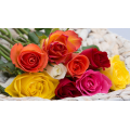 Offer 40 mix  roses Only 60 euros