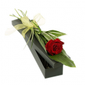 Rose In Box