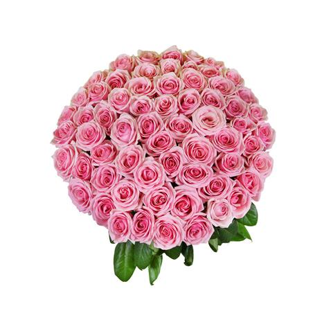 Τριαντάφυλλα και Τροπικά Φυλλώματα - BΟU 01822