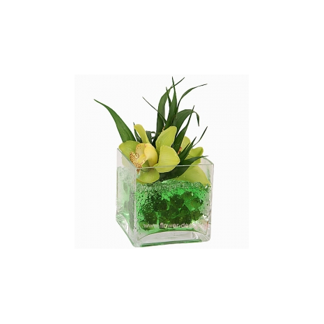 Orchis and Stones  in our flowershop - GLASS 18021