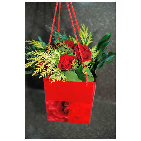 Roses and Tropical Leaves - BOU 0137
