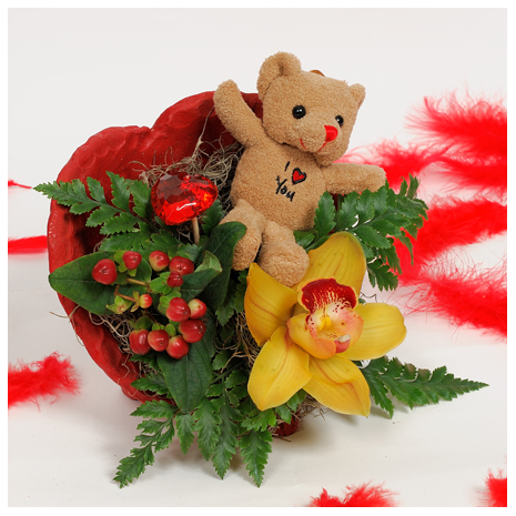 Orchis and Bear-toys in the hart - VAL 11028