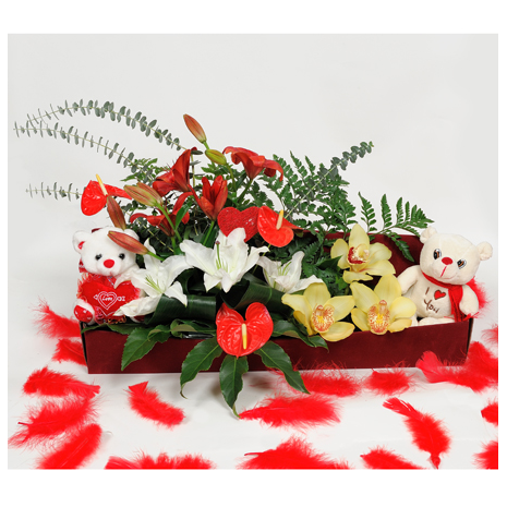 Box with Anthurium