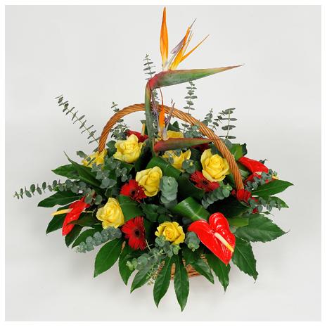 basket with berd of paradais