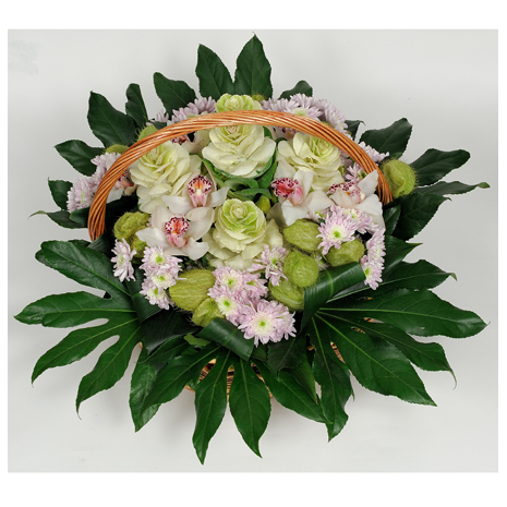 basket with Brassica