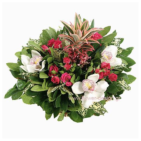 Ορχιδέες, Ανανάς και Τριαντάφυλλα - BASK 23024