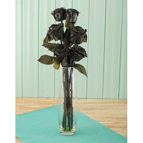 Black Flowers in Vase