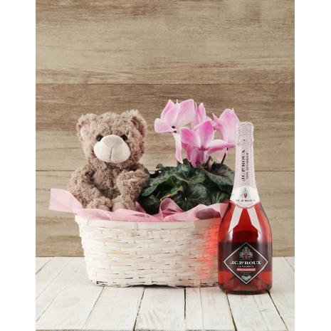 Cyclamen with Teddybear and Wine