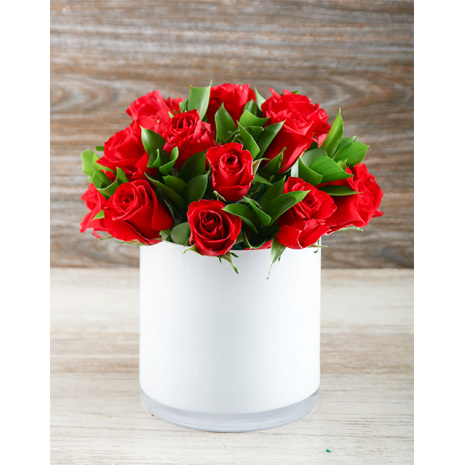 Red Roses in holder