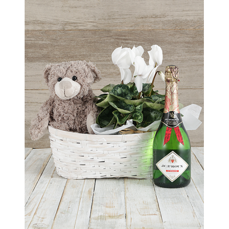 SET Cyclamen, Teddybear and Wine