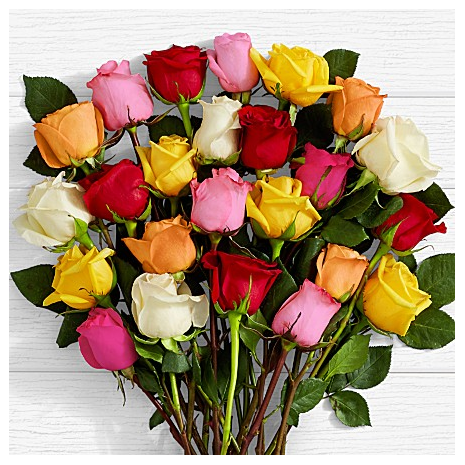 20 Mixed Roses SALE