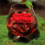 red Roses in glass  - GLASS 18007