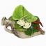 Aνθούρια και Τριαντάφυλλα