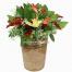 Ορχιδέες, Τριαντάφυλλα και Πιπέριες - CERAM 33012