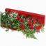 Roses In Box With Gipsophyla and Ferns