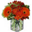 Floral arrangement with mix flowers - GLASS 18005