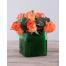 Orange Roses in Glass