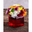 Mix Chrysanthemum in Glass