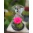 Forever Rose | Τριαντάφυλλο φούξια σε γυάλα που κρατάνε 4 χρόνια χωρίς περιποίηση