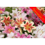 Offer 5 lilies Only 20 euros ΠΡΟ - 08